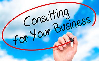 Website Professional Consultation
